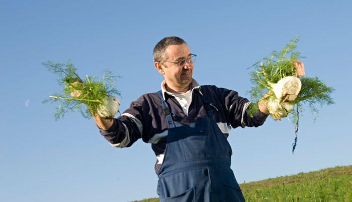 AGRICOLTURA BIOLOGICA: DA SOGNO A REALTA'