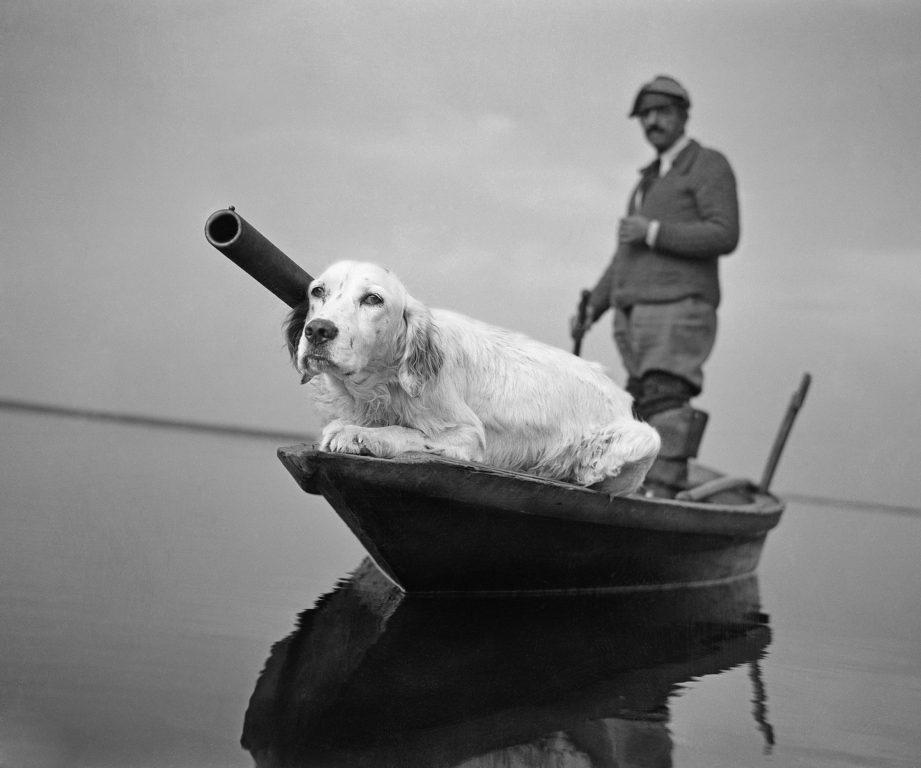 Caccia in valle - Venezia 1946 - PH© Vittorio Pavan Archivio Cameraphoto