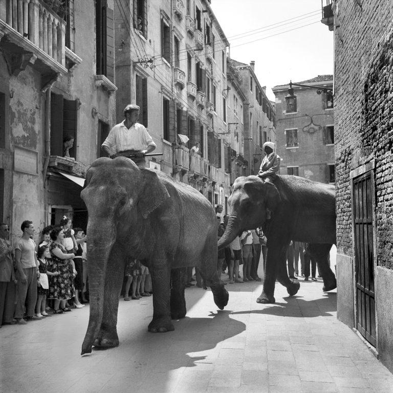 Il Circo a Venezia - 1954 -  PH© Vittorio Pavan Archivio Cameraphoto