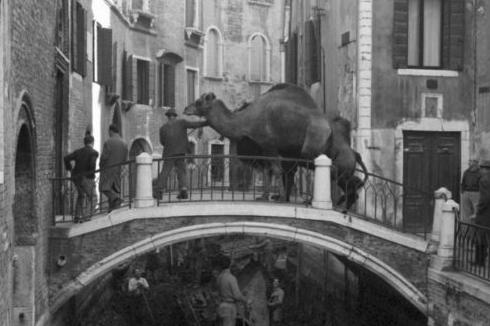 Cameraphoto: i preziosi scatti d'epoca che, alla Biennale, raccontano Venezia