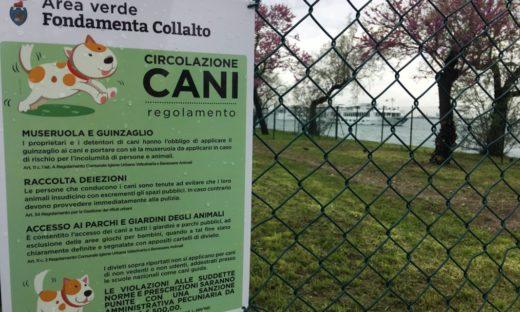 Giudecca: area cani, primo tassello per un'isola più viva e vivibile