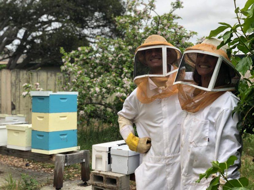 Dalle api l'alternativa ecologica alla plastica