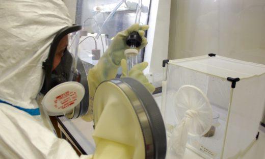 Zanzare, zecche e pulci nell'estate del Coronavirus