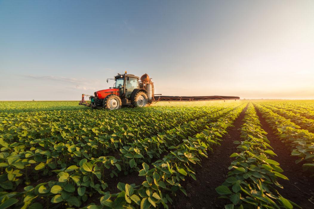Il futuro dell'agricoltura? Sempre più digitale