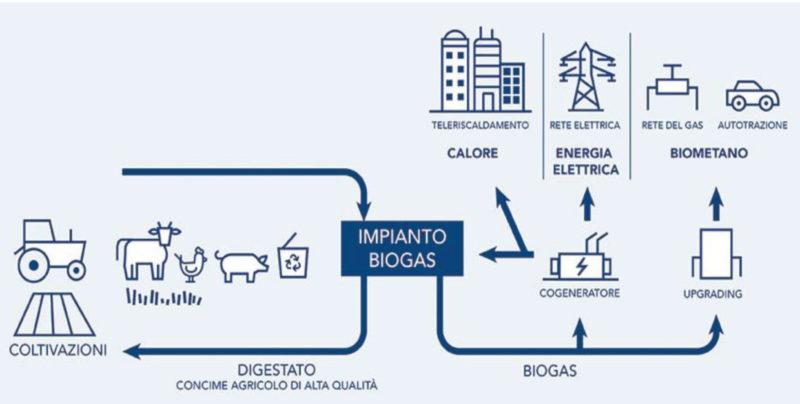 Lo schema dell'impianto biogas