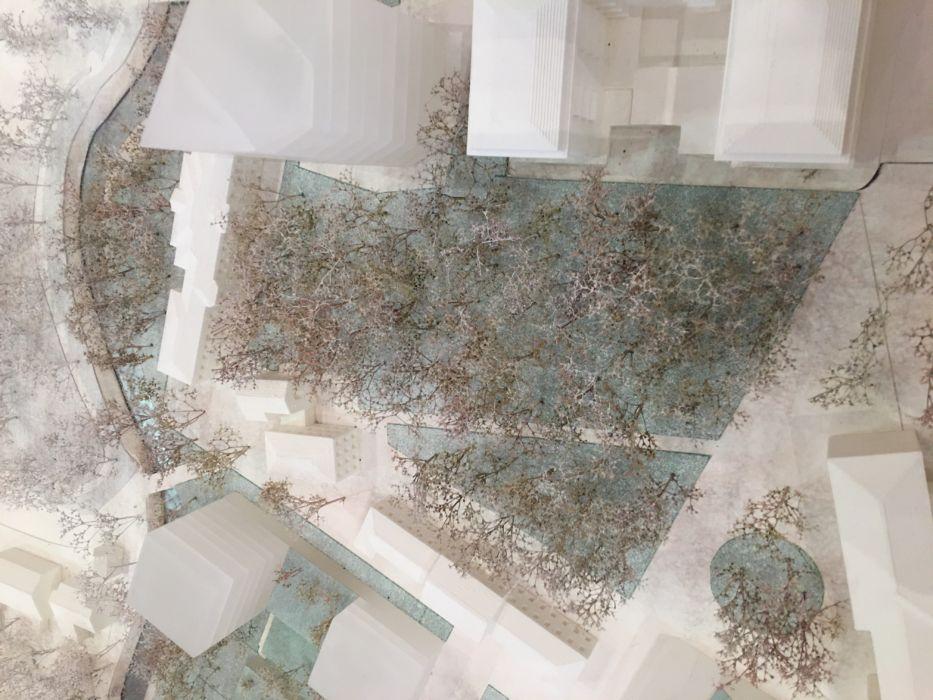 Dettaglio progetto area verde Castelvecchio- ex Ospedale Umberto I