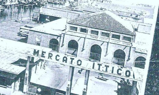 Il mercato ittico di Chioggia, 60 anni di attività