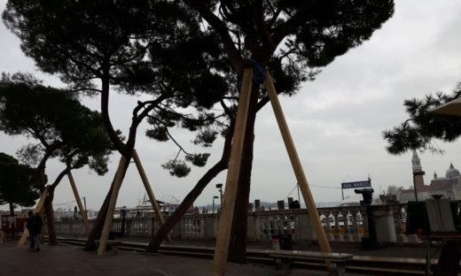Acqua alta: lavori pubblici a Venezia per oltre 5 milioni