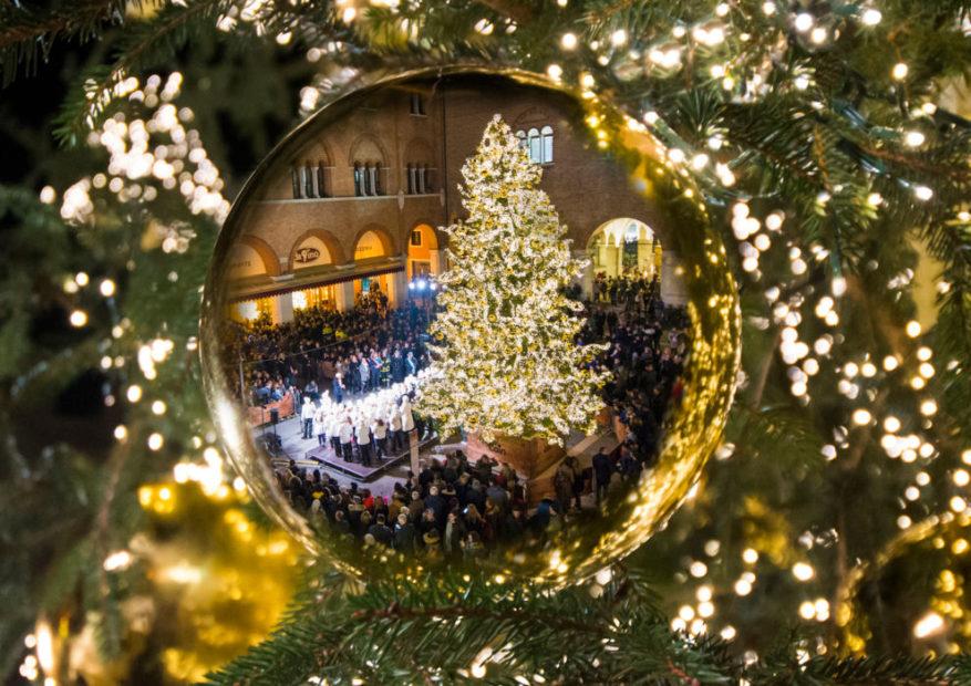 L'albero di Natale di Treviso