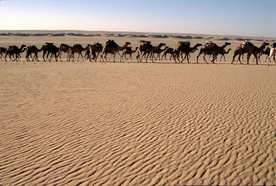 Niger Touareg viaggio