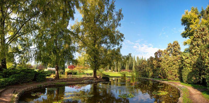 Parco Sigurta laghetti