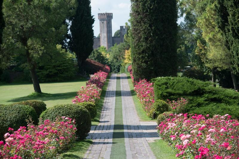 Parco Sigurtà viale delle rose