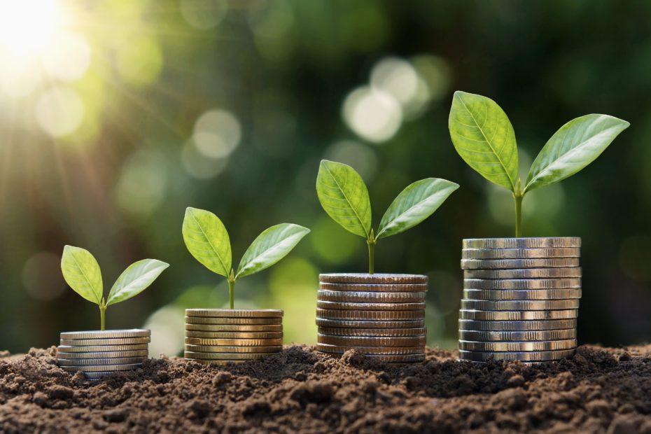 """Imprese """"green"""": più attente all'ambiente, più forti contro la crisi"""