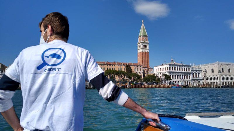 delfini a San Marco CERT