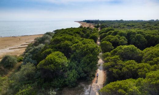 Google Maps arriva in Italia con la modalità Bike