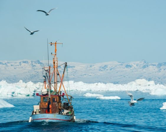 Groenlandia scioglimenti ghiacciai