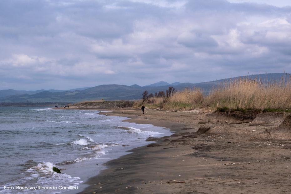 Spiaggia di Torre Flavia @ Riccardo Camilletti