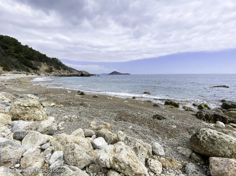 Adotta una spiaggia. La campagna di Marevivo per la tutela dell'ecosistema marino