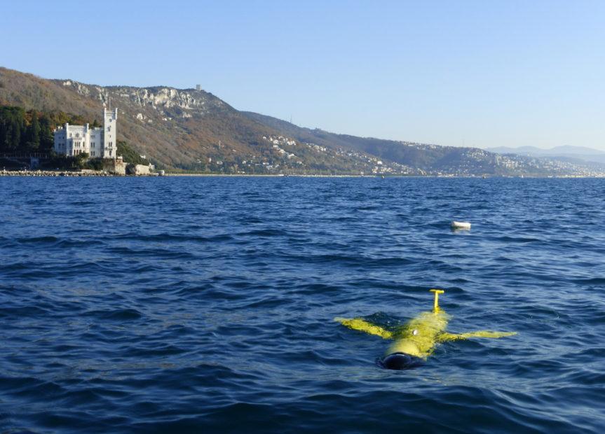 Ambiente: l'ecosistema si rigenera dove il mare sprofonda