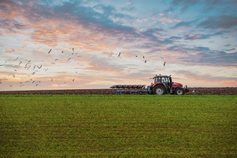 Belgio-Francia: quando un contadino cambia i confini