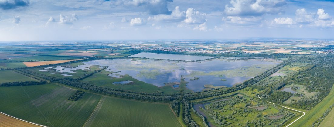 Il Po finisce nel Pnrr: il progetto per tutelare le biodiversità