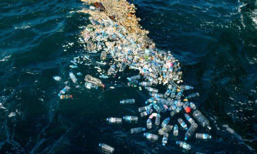 Plastiche: come un cestino galleggiante può contribuire all'economia circolare