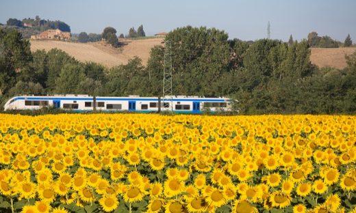 Il treno di Dante: da Firenze a Ravenna si viaggia attraverso la storia