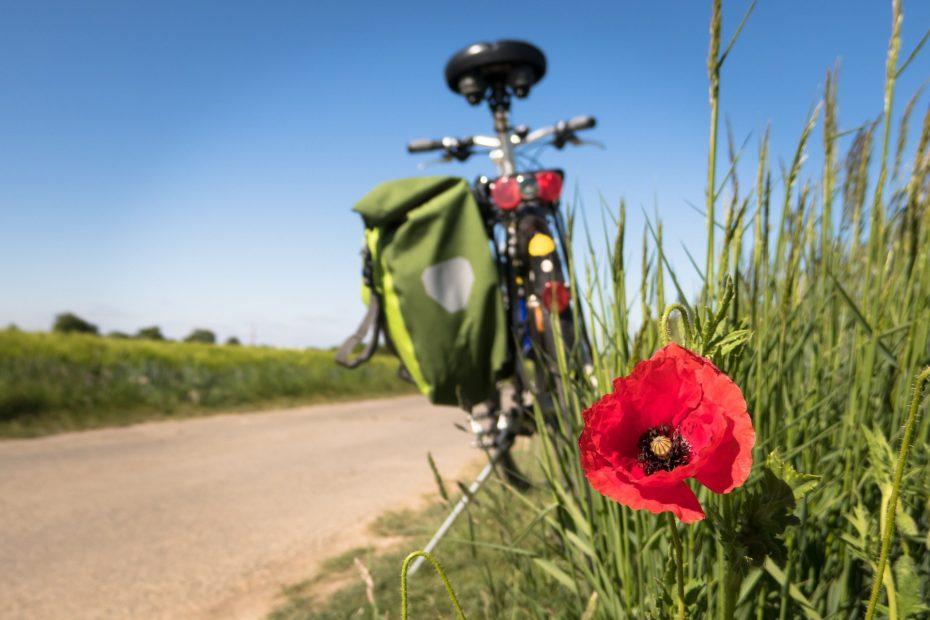 Alla Green Road dell'Acqua in Trentino e alla Ciclovia dei Parchi in Calabria l'Oscar italiano del cicloturismo