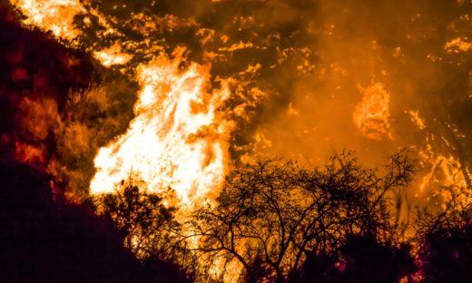Incendi: oltre 1.200 interventi dei pompieri in un giorno, l'Italia brucia