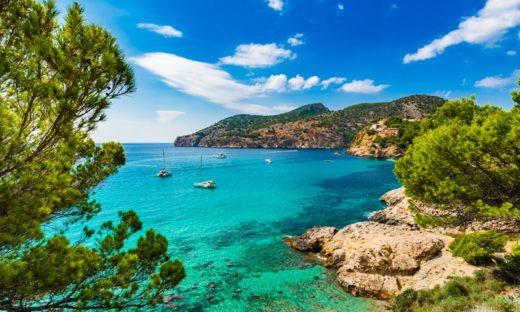 Mar Mediterraneo: habitat straordinario oggi a rischio