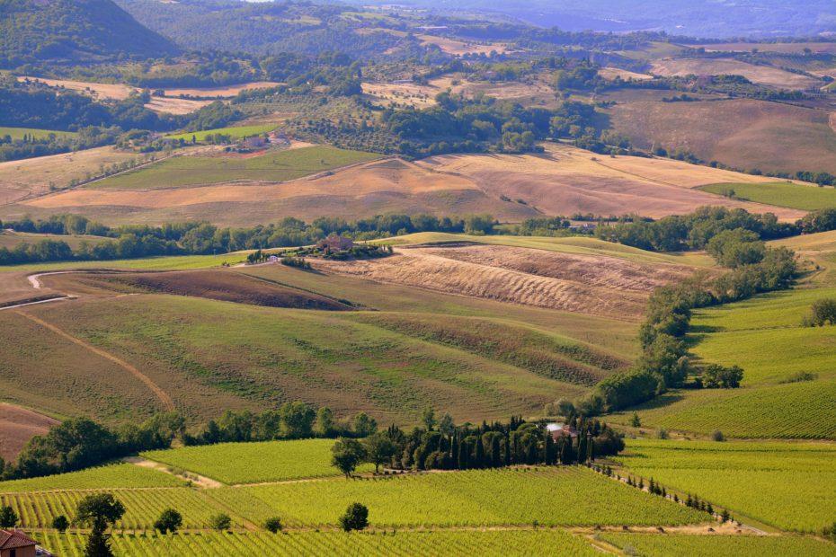 G20 dell'Agricoltura: il summit arriva a Firenze