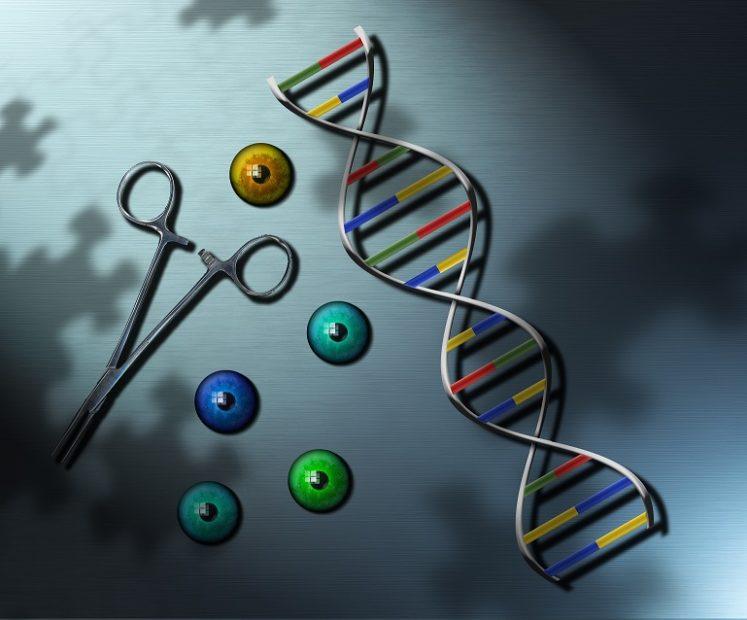 Covid 19: scoperto come agisce il gene che fa la differenza nei resistors