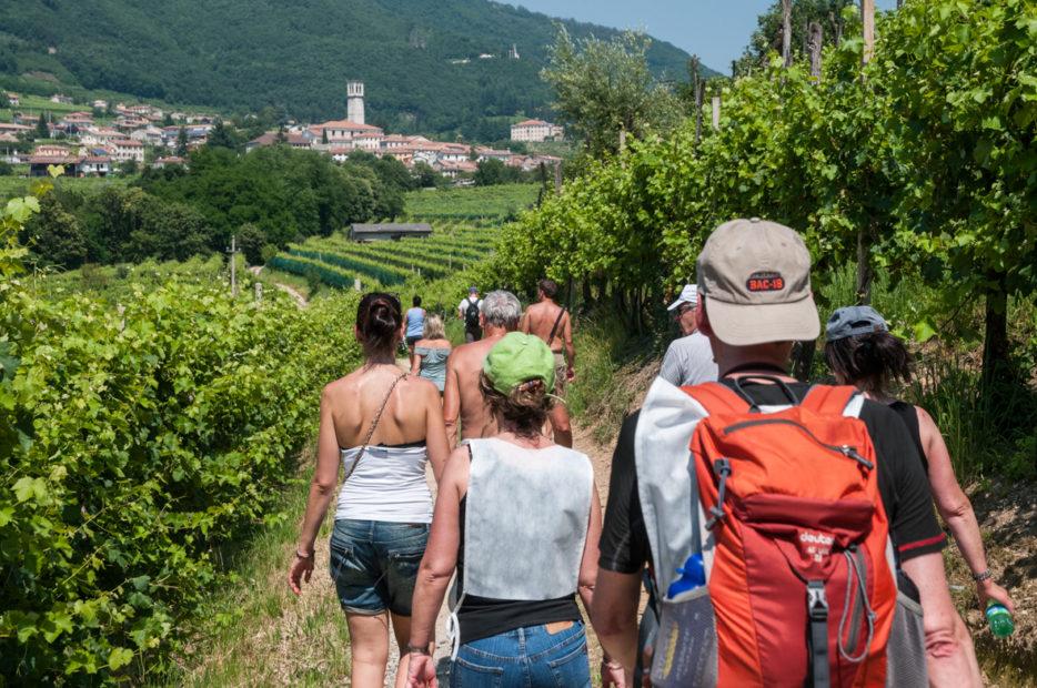 Tra le vigne e i paesaggi veneti: BB&T e Strada del Prosecco